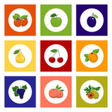 Round Fruit and Berry Icons on Colorful Background. Fruit and Berry Round Icons, White Icons with Fruit on Colorful Background, Persimmon and Peach , Apricot and Royalty Free Stock Photo