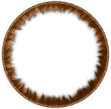 Round fur framework. Round framework made of fur with leather rim on a white background Royalty Free Stock Image