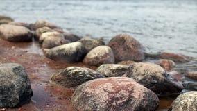 Round głazy na riverbank zbiory