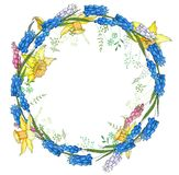 Round garland with spring flowers daffodils and and small blue flowers. Decorative season floral frame for festive design Stock Photo