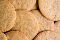 Round gingerbread cookies Royalty Free Stock Images