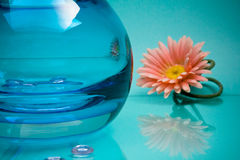 Round glass vase and pink flower on blue Royalty Free Stock Photo
