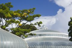 Round glasshouse. The dome and cupola of Glasgow's refurbished Kibble Palace stock photo