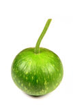 Round gourd Royalty Free Stock Photography