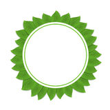 Round green frame with leaves. Vector illustration. Stock Images