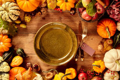 Round green plate surrounded by various squashes Stock Image