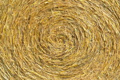 Round Hay Bails Stock Photo