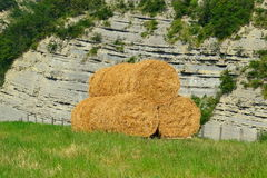 Round Hay Bails Royalty Free Stock Image