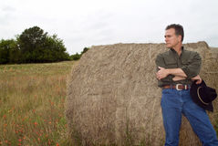 Round Hay Bale Stock Photo