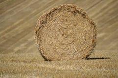 Round Hay Bale Royalty Free Stock Photo