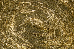 Round hay bale Stock Photos