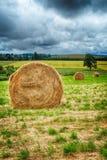 Round Hay Bale Royalty Free Stock Image