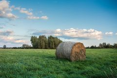 Round hay bale lying on a green meadow, copse and cloud in the sky. Round hay bale lying on a green meadow, copse and cloud in the blue sky stock photography