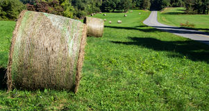 Round Hay Bales Royalty Free Stock Photo