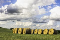 Round Hay bales with cloudscape. Round hay bales stored in a row in a field with large expanse of blue sky and cumulus clouds above Royalty Free Stock Photos