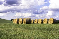 Round hay bales in a field - horizontal Royalty Free Stock Images