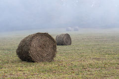 Round Hay Bales in Foggy Field Royalty Free Stock Photos