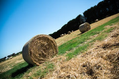 Round Hay Bales Royalty Free Stock Images