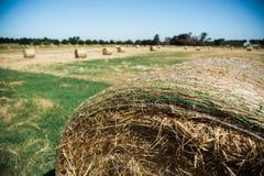 Round Hay Bales Royalty Free Stock Photos