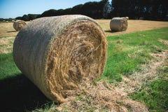Round Hay Bales Stock Photos
