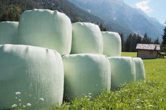 Round hay bales in plastic wrap cover. Round hay bales in green plastic wrap cover Stock Photography