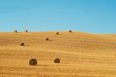 Round hay bales on stubble field of Tuscany. Royalty Free Stock Images