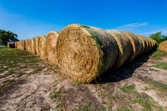 Round Hay Bales in Texas Royalty Free Stock Images