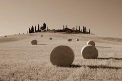 Round hay bales,  Tuscany, Italy. Sepia Royalty Free Stock Photos