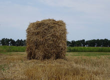 Round hayrick on the field after summer harvesting stock image Stock Photography