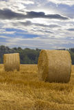 A round haystack against the blue sky on a field Stock Photo