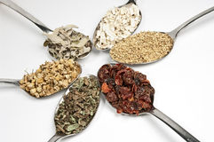 Round with herbal teas Royalty Free Stock Photos