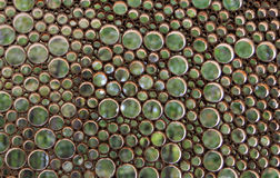Round holes in the old lattice on a background of green leaves. Looks like bubbles Royalty Free Stock Photos