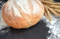 Round homemade bread with wheat ears and scattered flour on black background. Selective focus royalty free stock photography