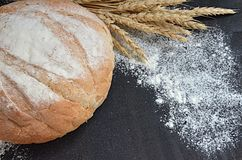 Round homemade bread with wheat ears and scattered flour on black background. Selective focus stock image