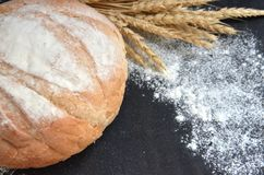 Round homemade bread with wheat ears and scattered flour on black background. Selective focus royalty free stock images