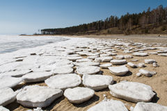 Round ice floes on the sandy shore. Royalty Free Stock Image