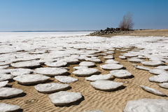Round ice floes on the sandy shore. Stock Photos