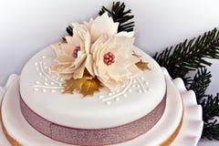 Round iced cake. Royalty Free Stock Photo