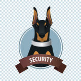 Round icon with Doberman Pinscher Royalty Free Stock Photography