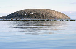 Round island. Fine round island in the white sea against blue water Royalty Free Stock Photography