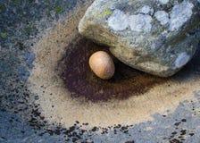 Round kamień Obrazy Royalty Free