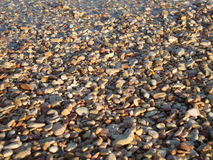 Round kamienie na seashore Obrazy Royalty Free