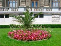 Round kwiatu łóżko z drzewkiem palmowym w centrum Obrazy Royalty Free