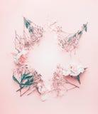 Round kwiecisty ramowy przygotowania z pastelowymi menchiami kwitnie, odgórny widok Zdjęcia Stock