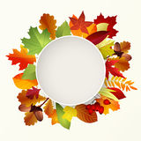 Round label with autumn leaves. Place for text .  Stock Image