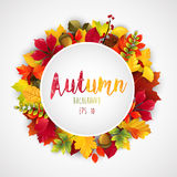 Round label with various autumn leaves Stock Image