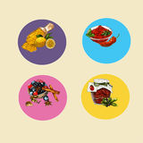 Round labels with colored background lemon and chilli and carry basilco and rosemary cinnamon spice and berries, Stock Image