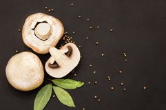 Round and large champignon mushrooms lie on a black background with bay leaf and pepper stock photos