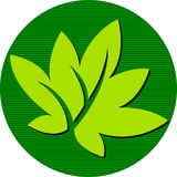 Round leaf logo Royalty Free Stock Photography
