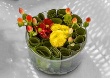 Round leaves and flowers in box Royalty Free Stock Photography